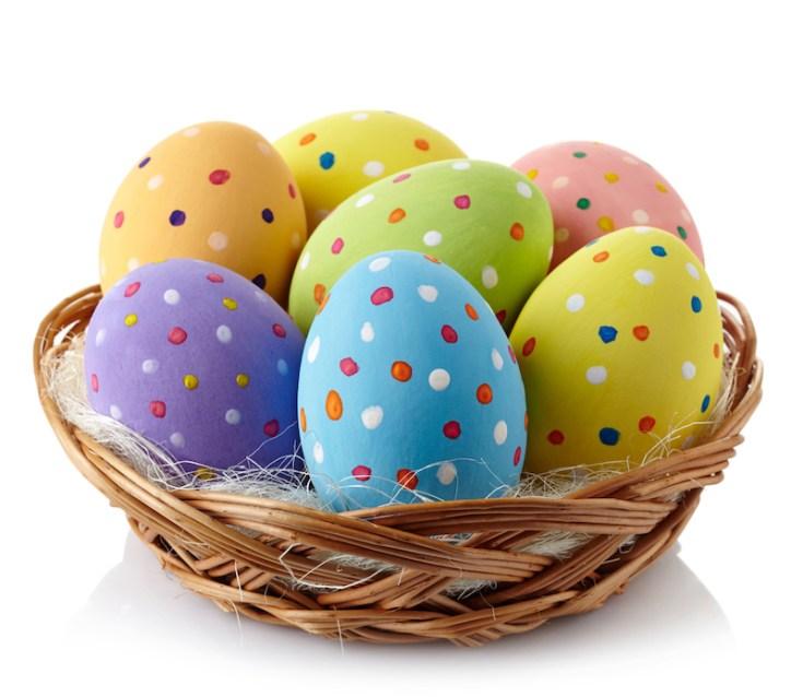 Il coniglio e l'uovo, una caccia senza fine!