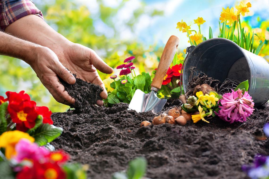 Garden-sharing, condividere il proprio giardino con gli altri. Una splendida opportunità.