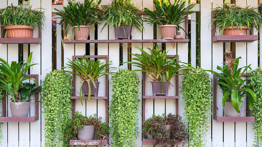 Cambia prospettiva: pensa green in verticale!